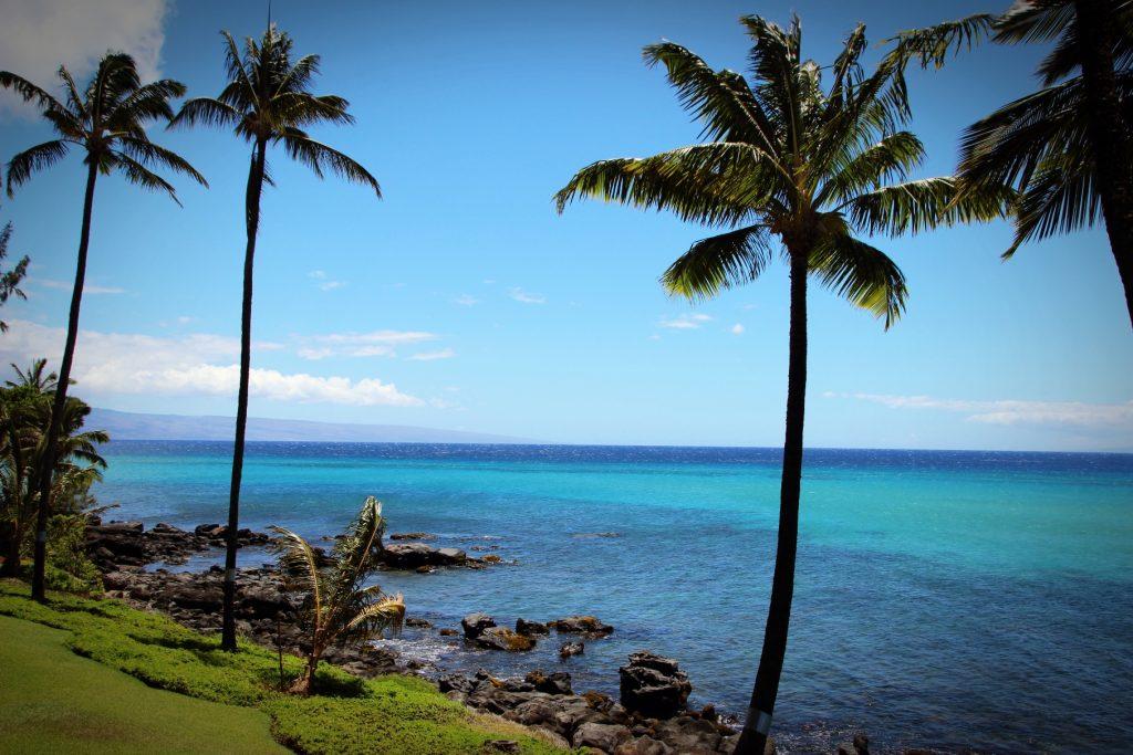 Mahalo Hawaii